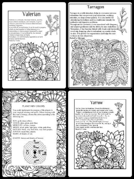 Coloring Book Herbs and Healing Wicca for begginers, learn Wicca, Wicca beginner, books on Wicca, Wiccan gift, Wicca blessings, Wicca blessing book