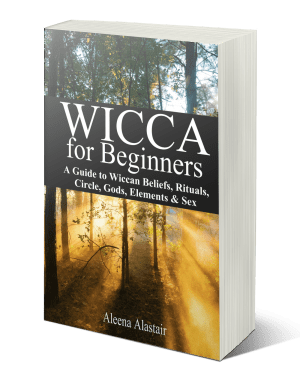 Wicca for Beginners: A Guide to Wiccan Beliefs, Rituals, Circle, Gods, Elements & Sex, books on Wicca, pagan rituals for beginners, learn Wicca