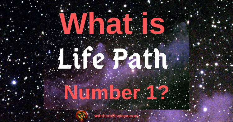 What Is Life Path Number 1